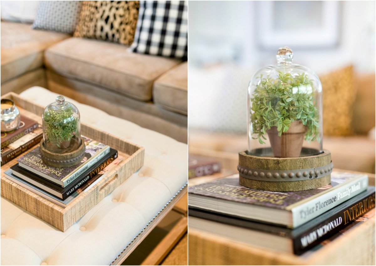 Living Room Coffee Table decor