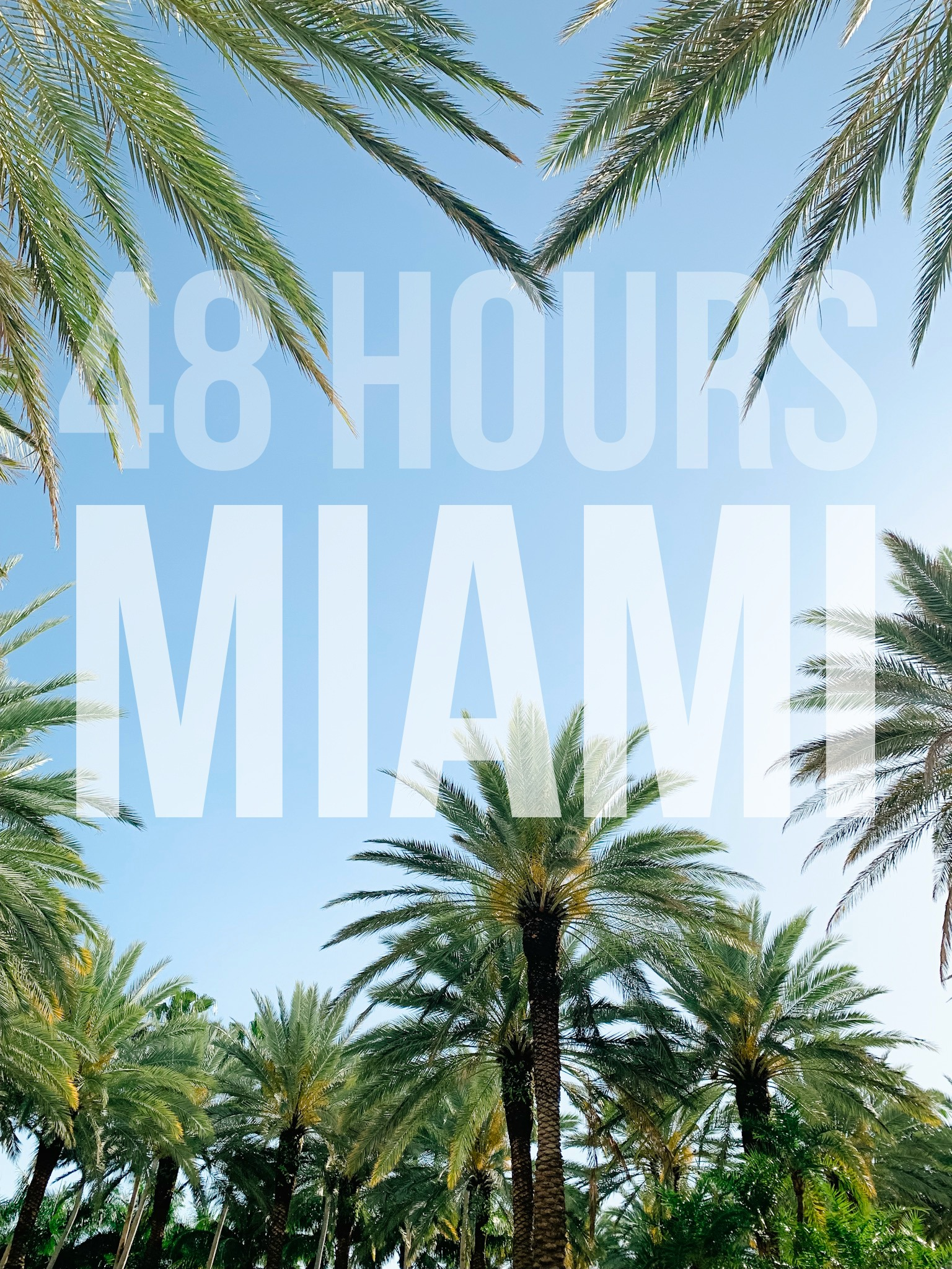 48 Hours in Miami Beach Florida