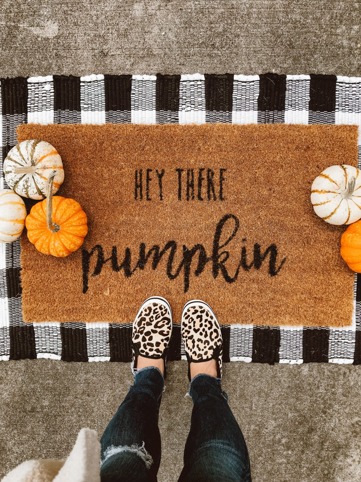 Hey There Pumpkin Mat with checkered mat